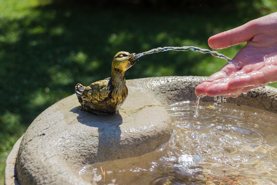 Beneficios del agua para la salud - Hábitos Saludables de Vida